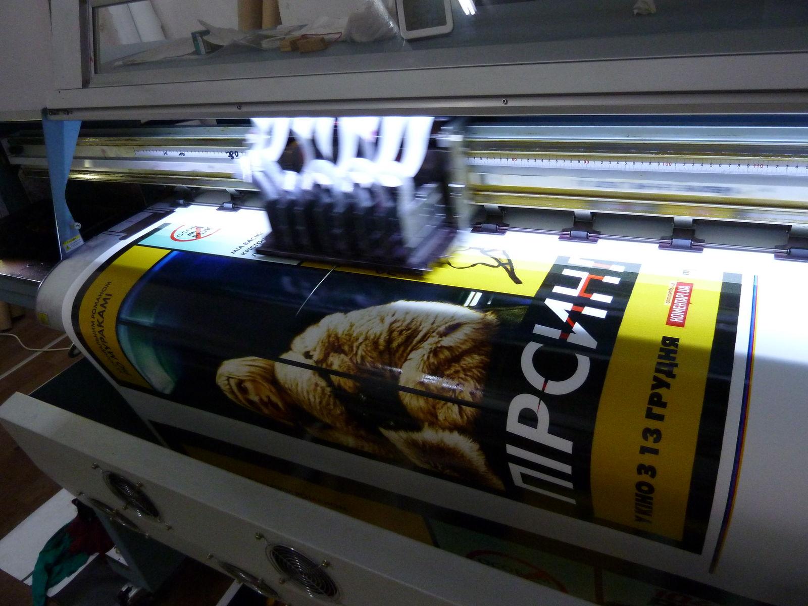 широкоформатная печать фото подольск свиньи